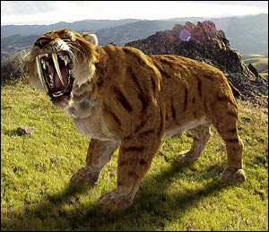 El Clan STH Saber-tooth-tiger