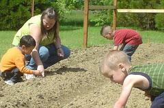 Preschoolers planting sunflowers