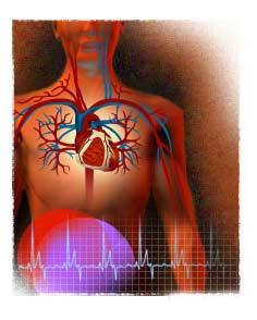 http://2.bp.blogspot.com/_gWbwaqm5Mxs/SfOwdYCbWwI/AAAAAAAAAXM/d8viHwITD6A/s1600/kalp+damar.jpg