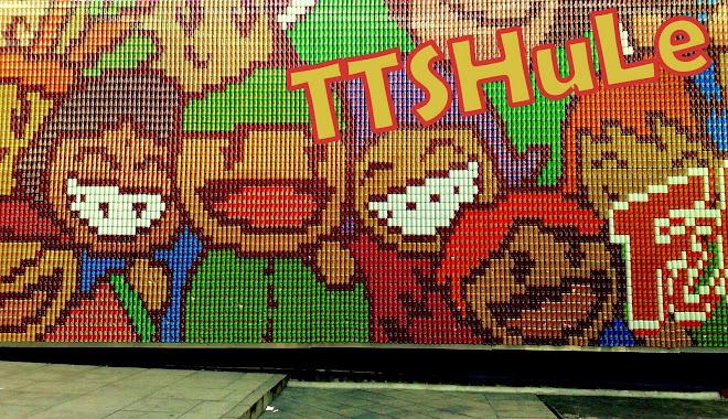TTSHULE