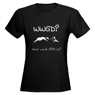 WWGD? What would Grok do? Paleo, primal, ancestral, caveman t-shirt.