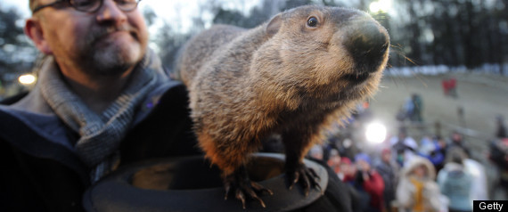 Groundhog Day 2011 Prediction Punxsutawney Phil-Punxsutawney Phil,