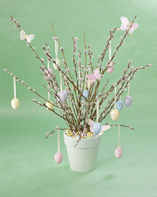 Pussy Willow arrangement by Martha Stewart