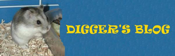 Digger's Blog