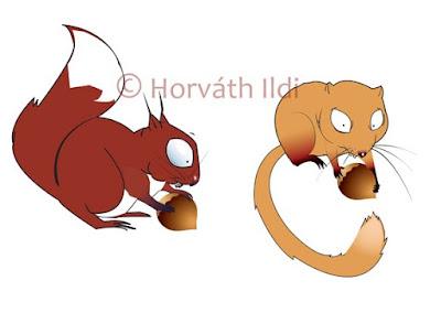 állatos reklámfigura karakter character design