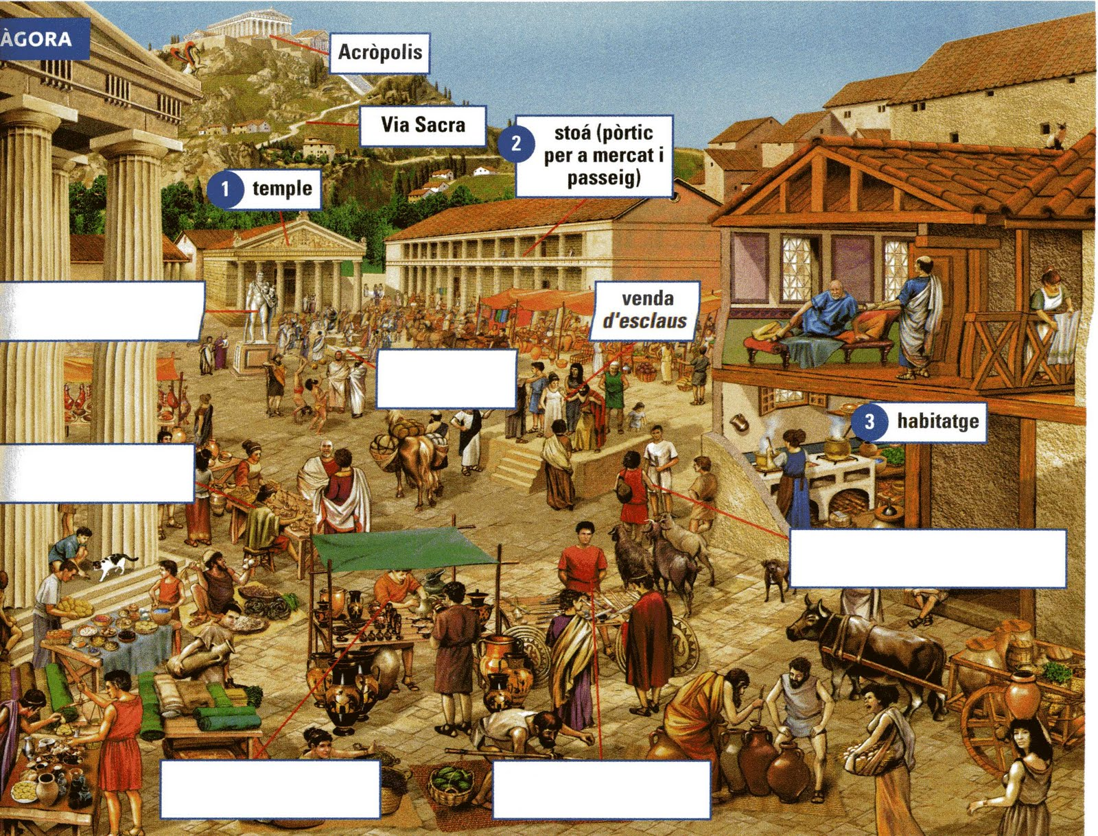 Aprenc Fent Ho L 39 Gora D 39 Atenes