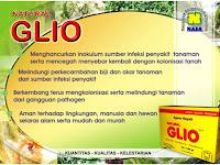 Pengaruh Jamur Antagonis (Gliocladium sp) Dalam Mengendalikan Jamur Patogen Tular Benih Pada Tanaman Padi (Oryza sativa)