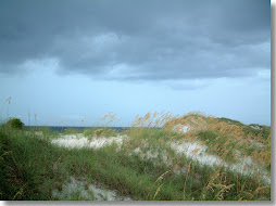 gulf coast - my birth place