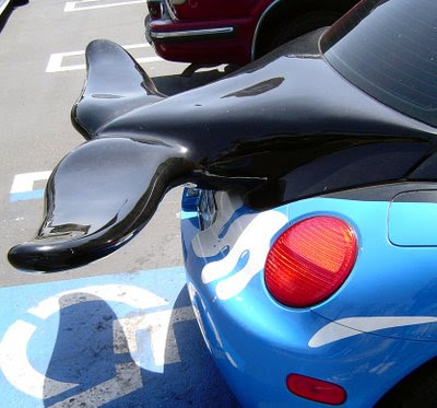 http://2.bp.blogspot.com/_gfXupHOEhH0/Slx2_5HIFiI/AAAAAAAAHWE/1MmkPVIvhHU/s400/dolphin-car-spoiler.jpg