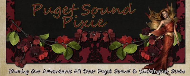 Puget Sound Pixie