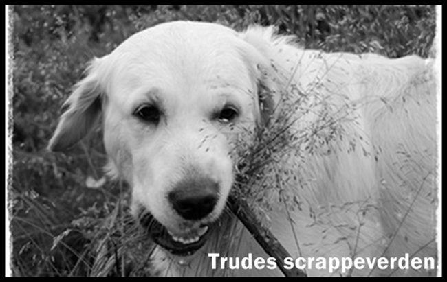 Trudes scrappeverden