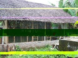 Rumah Kandang Peternakan Kelinci King's Rabbit-Makassar