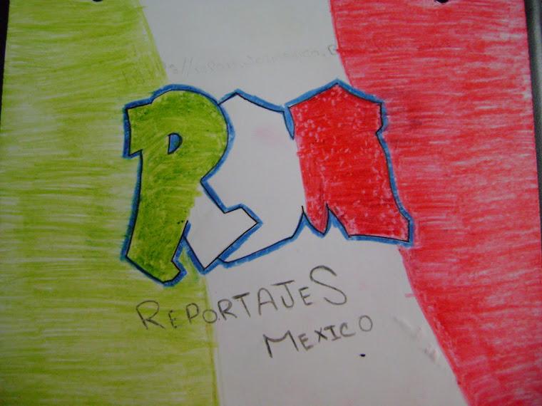 RePoRtAjEs MeXiCo S.P.