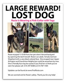 Please Help Us Post This Flyer