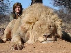 El amigo invisible. Ngwarati+Safaris+le%C3%B3n