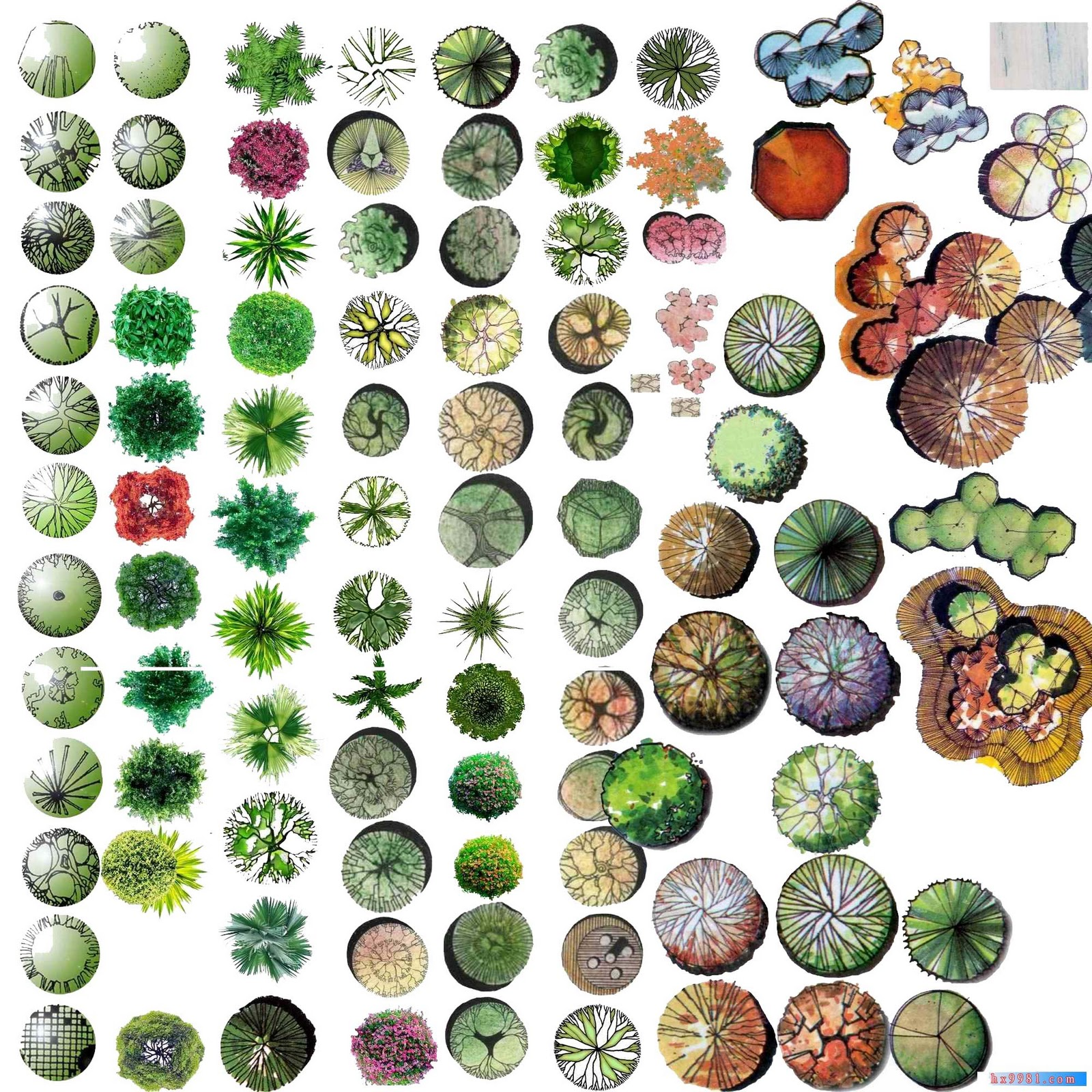 TREE%20PSD%2007.jpg