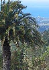 View of San Simeon