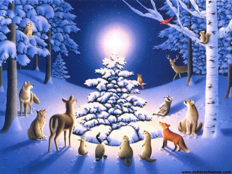 [Snow+Animals+Wallpaper.jpg]