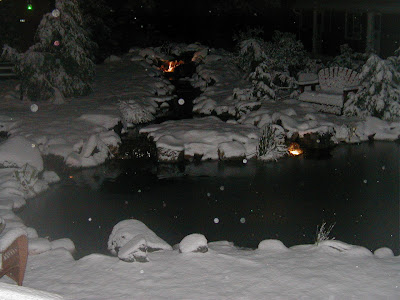 Night snow