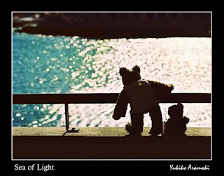 Sea of Light - Two little teddy bears, Teddy and Pencil, are gazing at the sea full of light. Photo was taken in Malta, by Yukiko Aramaki.