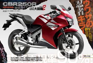 New 2010 Honda CBR 250