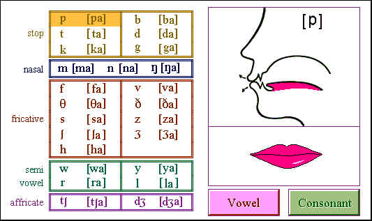 what is the difference between pure vowels and diphthongs how do you describe them Daniel jones developed the cardinal vowel system to describe vowels in is the difference between the pure or stable vowels a vowel sound that.