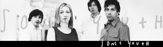 Sonic Youth Play Final Show at McCarren Pool on Saturday, August 30th