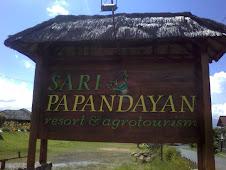 Sari Papandayan