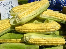 Enjoy Local Sweet Corn All Year