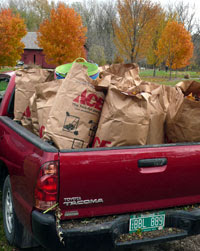 Truckload of leaves