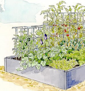 High-Yield Garden in the Kitchen Garden Planner