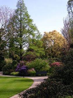Trompenburg Arboretum