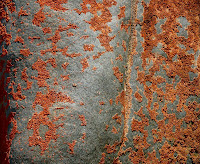 Weathered dolerite, Mt Wellington summit plateau - 15th Dec 2007