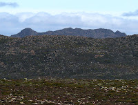 Collins Bonnet peeks over Thark Ridge from near the Mt Wellington summit - 15 Sep 2007