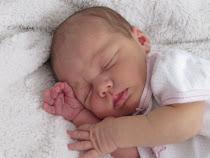 Berklie 2009 Newborn
