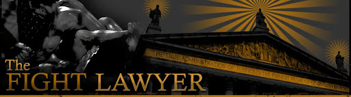 The Fight Lawyer