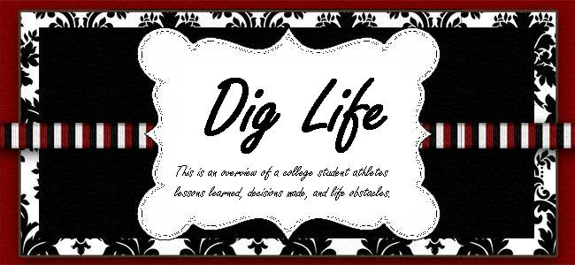 Dig Life