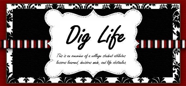 Dig Life