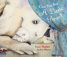 Can You See A Little Bear? Book Review