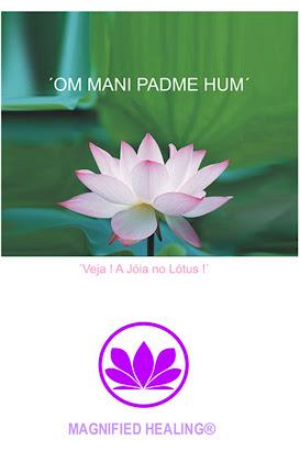 Magnified Healing 1ª Fase e Revisão