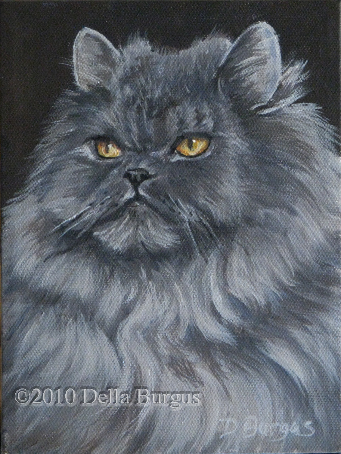 The Creative Spirit: Gray Persian Cat