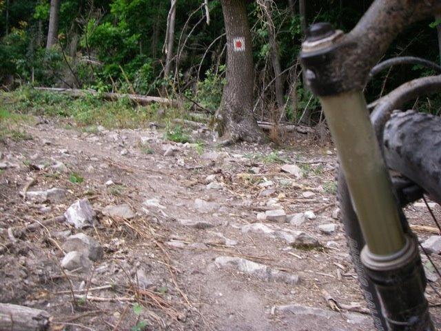 [bike-wi.jpg]