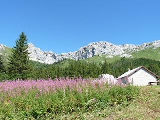 無人の避難小屋があるロイボンRoybon(標高1450m)
