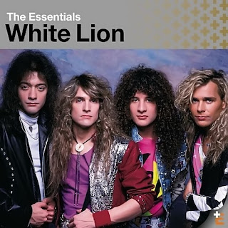 white_lion_wallpaper
