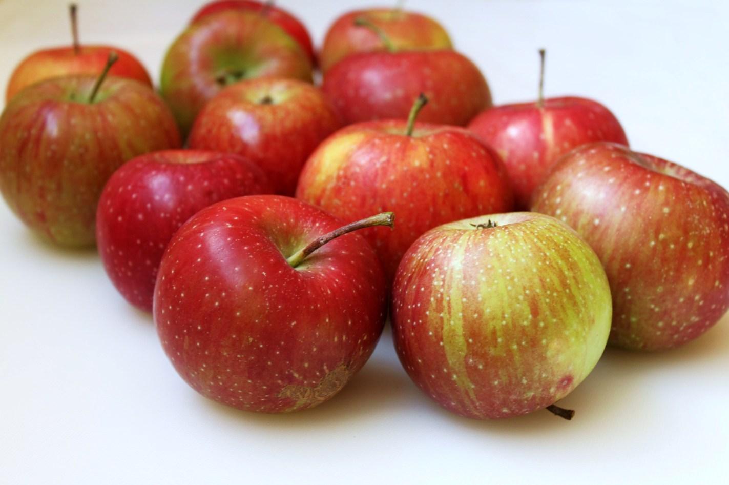 Dorie Greenspan Apple Bundt Cake