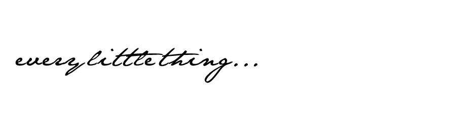 everylittlething...