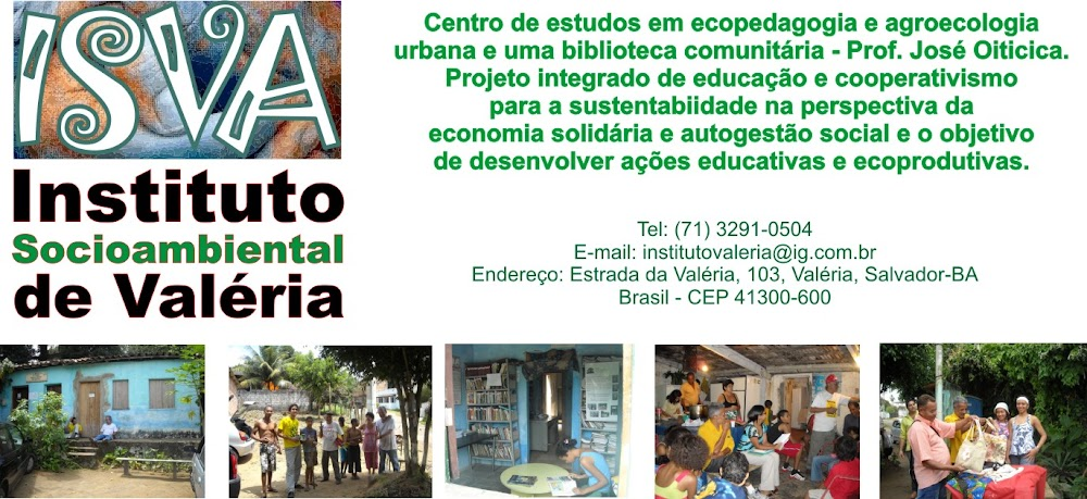 INSTITUTO SÓCIOAMBIENTAL DE VALÉRIA
