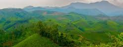 travel_destination_munnar