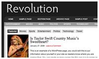 Revolution Pro Media Wordpress Theme mdro.blogspot.com