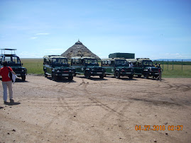 Safari Wagons